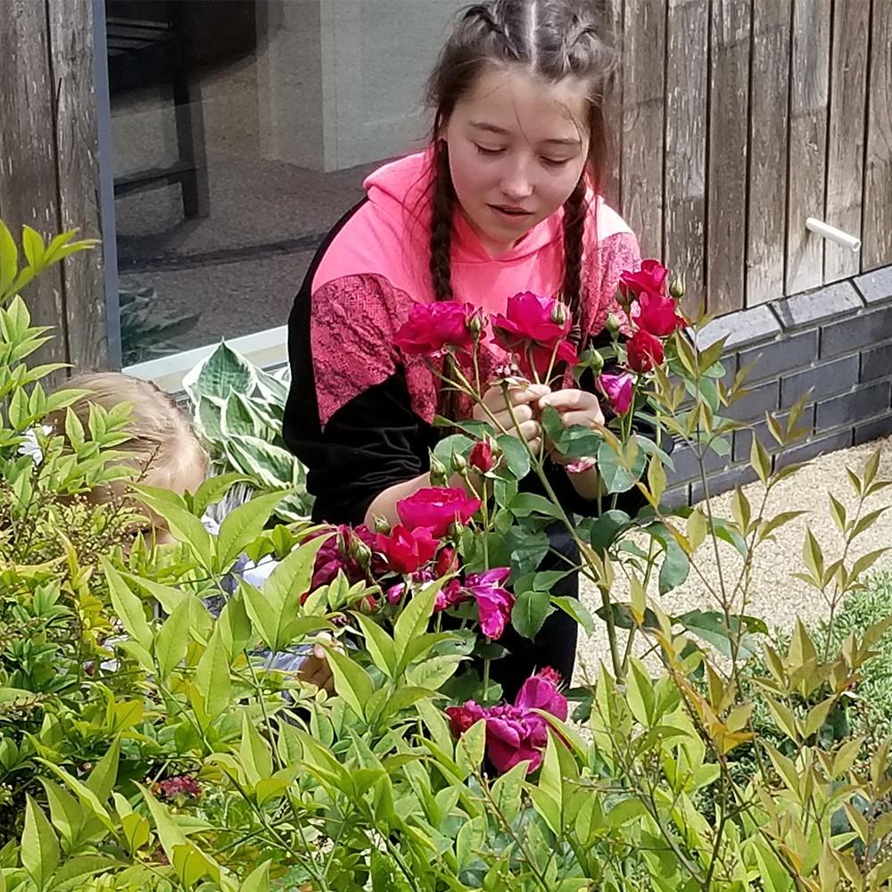 Hayley in the Hospice Gardens